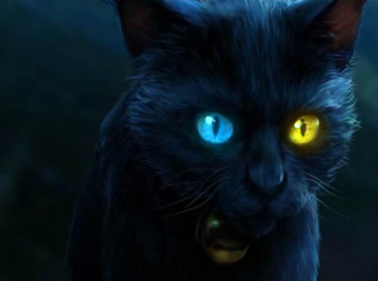 """""""8 wie unendlich"""" – Unendliche Katzengeschichten"""