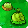 Cabbage-Pult Plant Guide
