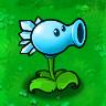 Snow Peas Plant Guide